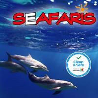 Seafaris Gosfinhos Algarve