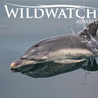 Wild Watch