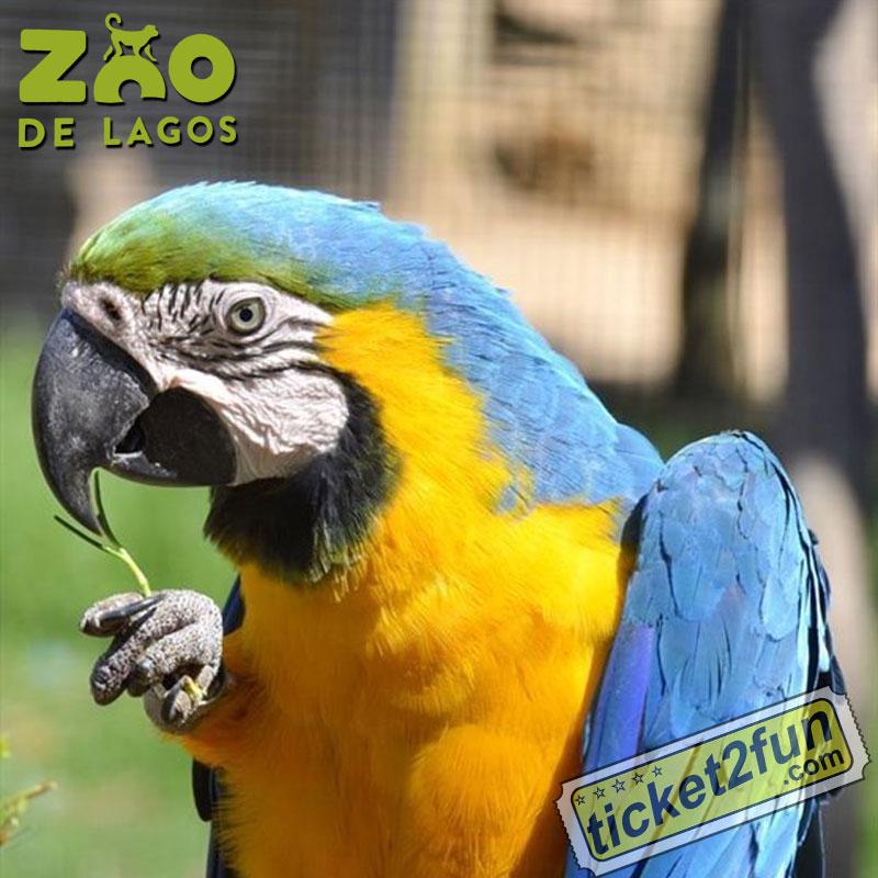 ZooLagos1